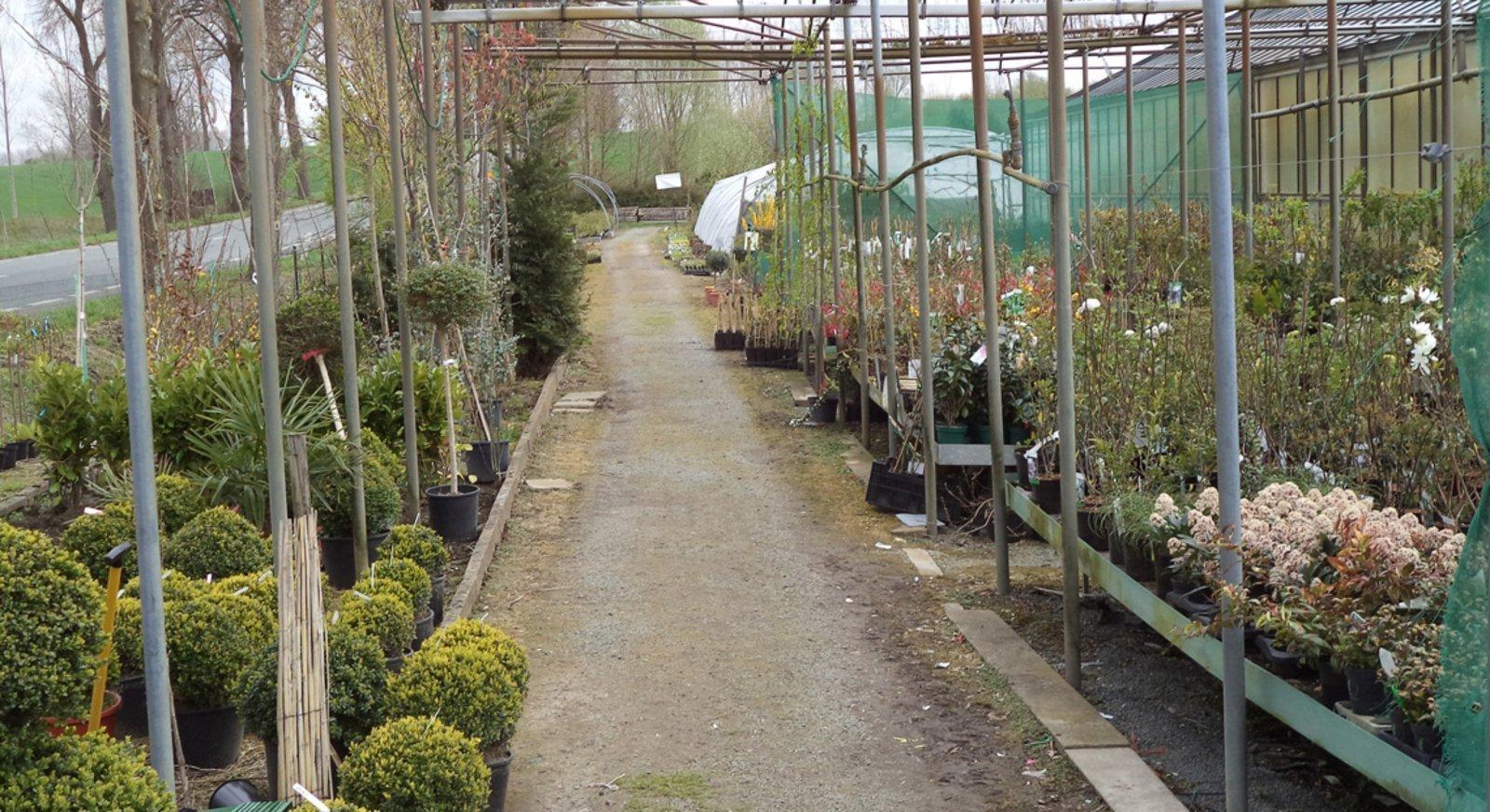 Horticulture Yernault